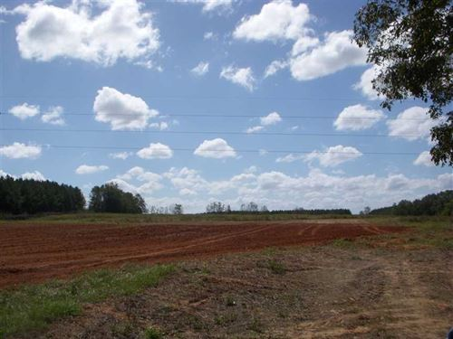 20 Acre Tract Near Bakerhill, Al-O : Eufaula : Barbour County : Alabama