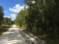 Lake Marion Residential Development : Summerton : Clarendon County : South Carolina