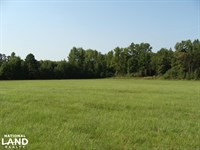 41 Acre Recreational And Hunting : Romance : White County : Arkansas