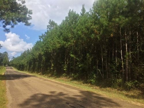 Residential, Commercial Land For Sa : McComb : Pike County : Mississippi