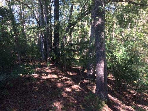 Briar Patch Farm Jasper Co Ga : Monticello : Jasper County : Georgia