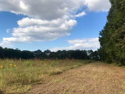 20 Acres of Timber And Crp Wit : Newellton : Tensas Parish : Louisiana
