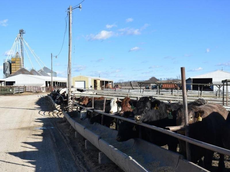 Turn Key Feed Lot Farm For Sale Triplett Chariton