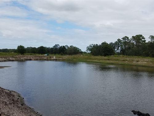 195 Acre Wimauma Mine And Future Re : Wimauma : Hillsborough County : Florida