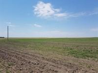 Grayson Family Trust Dryland : Chappell : Deuel County : Nebraska