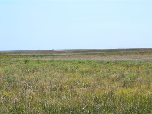Yung Crp Farmland : Kimball : Nebraska