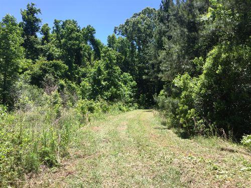 Harmony Hall Tract E : Cottageville : Colleton County : South Carolina