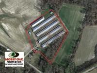 Reduced, 6.5 Acre Chicken Farm Fo : Robersonville : Martin County : North Carolina
