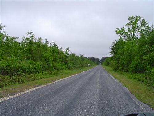 Camp Tract 2 : Latta : Dillon County : South Carolina