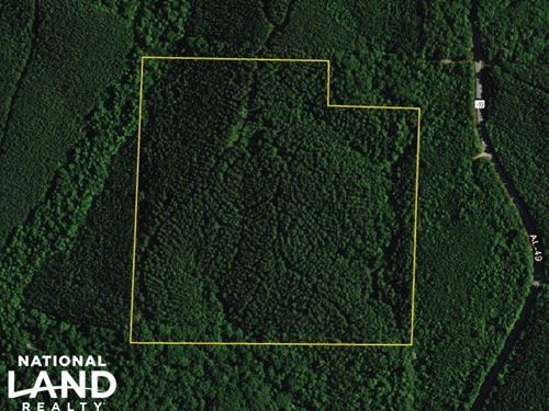 County Road 49 Timber Tract : Lineville : Clay County : Alabama