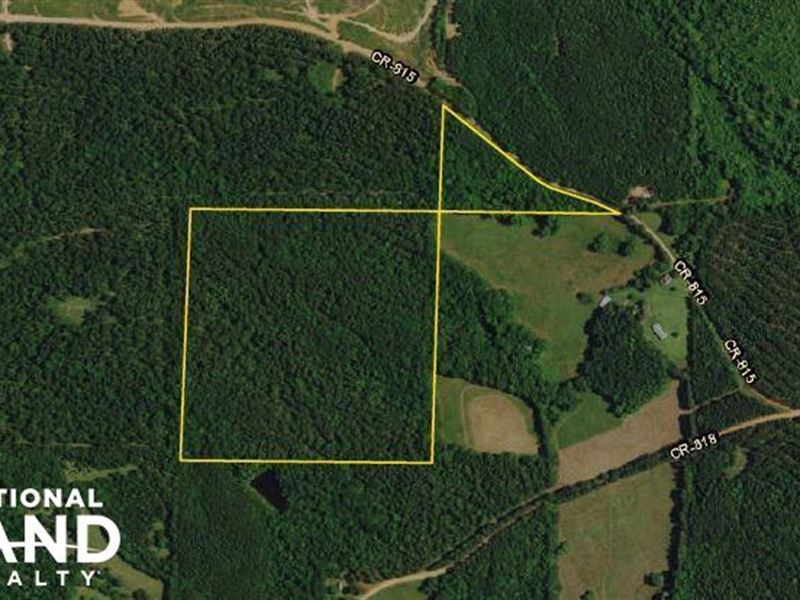 Roanoke Timber Investment : Roanoke : Randolph County : Alabama