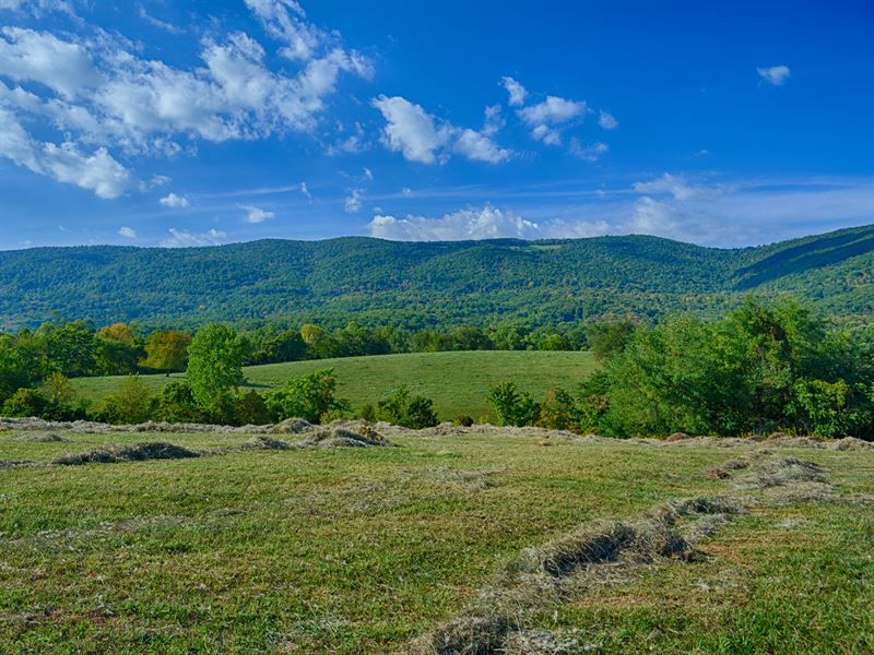 Expansive Blue Ridge Mtn Views Farm For Sale Afton
