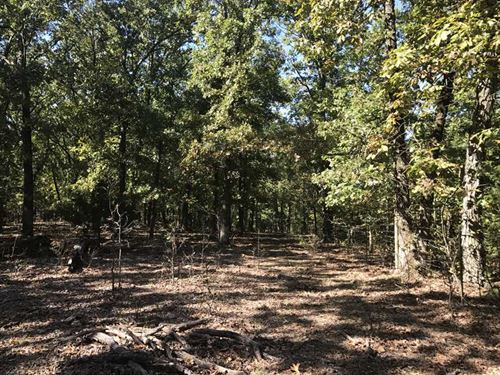 Reduced, 40 Acres Henry County Joi : Deepwater : Henry County : Missouri