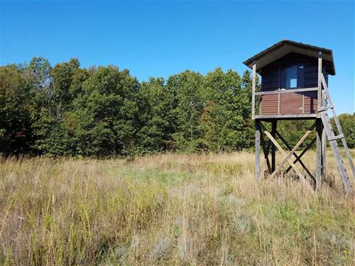 83.7 Acres With Year Round Spring : Seymour : Wright County : Missouri