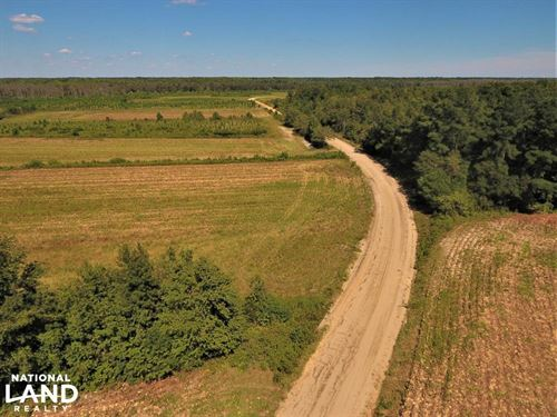 McMillan Farm : Lumber Bridge : Robeson County : North Carolina