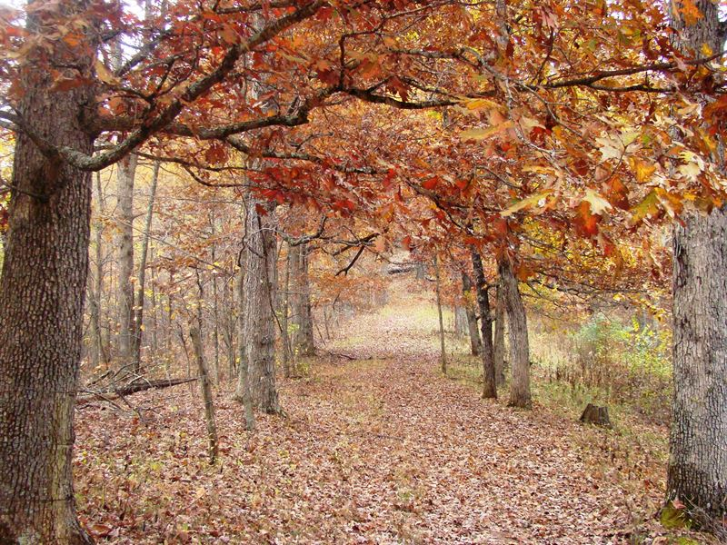 Prime Hunting & Timberland Inv : Branchland : Cabell County : West Virginia