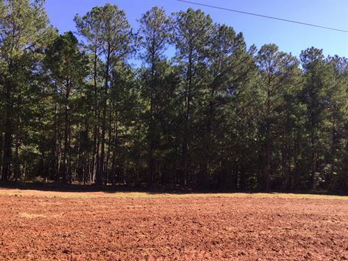 43-027 Prather, 433 Acres : Opelika : Lee County : Alabama