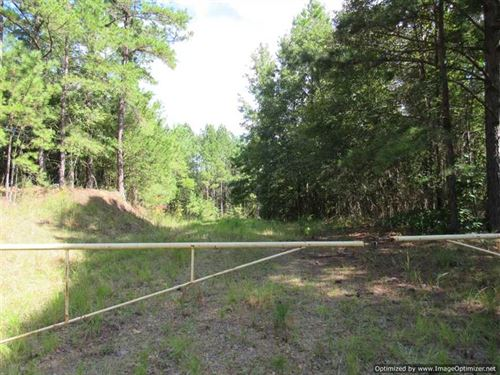 80 Acres With Primitive Cabin in : Kosciusko : Attala County : Mississippi