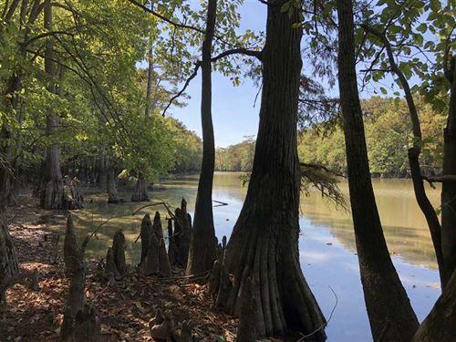 250 Acres, Deer, Duck, Lee Coun : Moro : Lee County : Arkansas