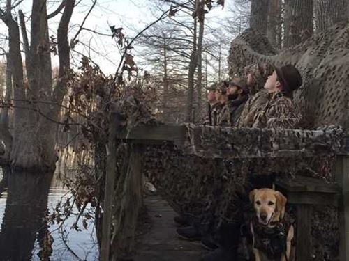 61 Acres Duck Hunters Dream, : Lambert : Quitman County : Mississippi