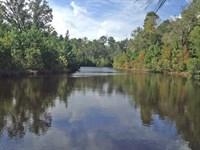 Bank Owned Properties : Eastman : Dodge County : Georgia
