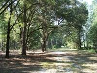 Historic Belfair Plantation : Springfield : Effingham County : Georgia