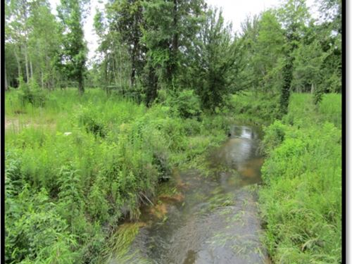 80 Acres In Simpson County : Magee : Simpson County : Mississippi