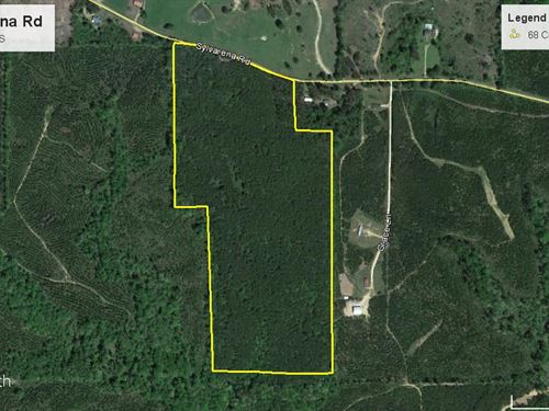 Great Hunting Or Timber Investment : Wesson : Copiah County : Mississippi