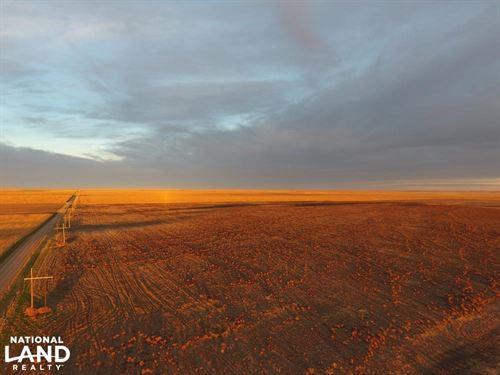 Dry Land Farm Ground For Sale Kit : Burlington : Kit Carson County : Colorado