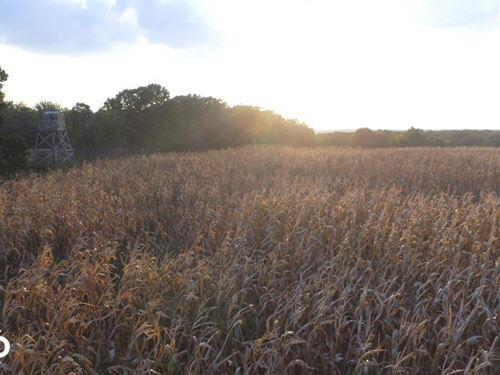Big Hill Wildlife Haven : Cherryvale : Labette County : Kansas