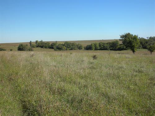 Greener Pastures : Allen : Lyon County : Kansas