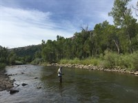 Piedra River Ranch : Bayfield : Archuleta County : Colorado