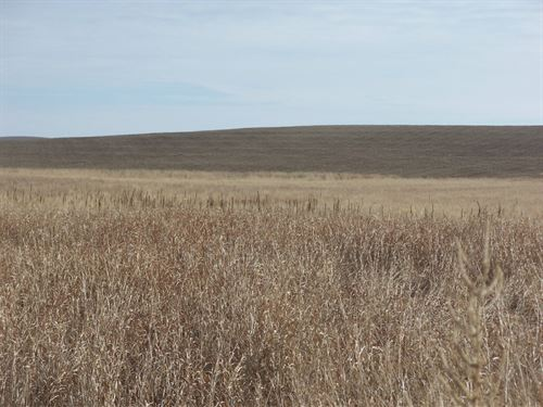 Chase County Crp : Elsie : Chase County : Nebraska