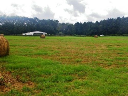 Pastureland Home Camp Near Bogue Ch : Tylertown : Walthall County : Mississippi