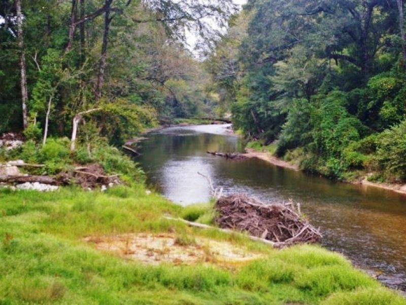 Waterfront property for sale on mag farm for sale for Ranches for sale in mississippi