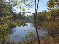 Lilly Pond Overlook : Clinton : Vermillion County : Indiana