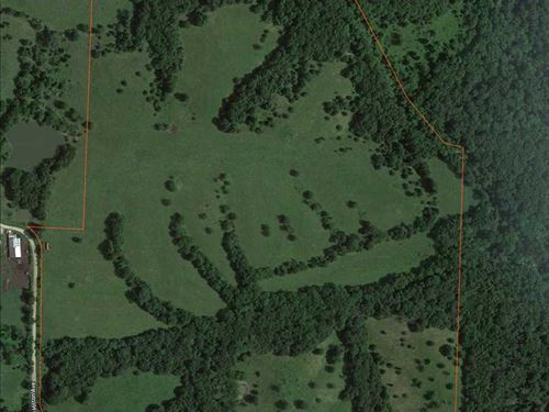 Reduced, Nice 90 Acre Combination : La Plata : Macon County : Missouri