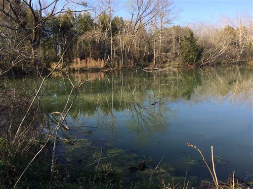 Hunting Land Near Macon Ms : Macon : Noxubee County : Mississippi