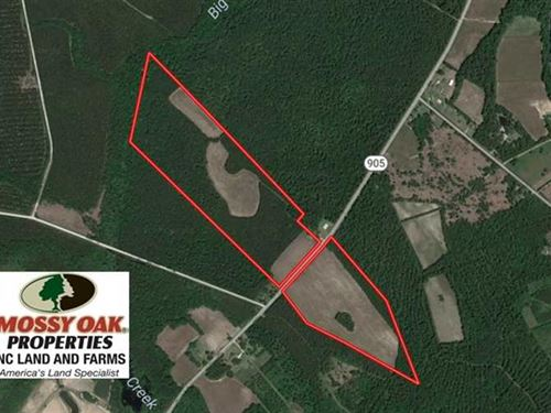 61.19 Acres of Farm And Timber Lan : Tabor City : Columbus County : North Carolina