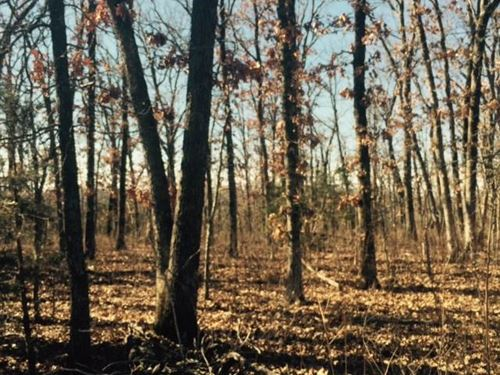 Great 80 Acres in Benton County Mi : Warsaw : Benton County : Missouri