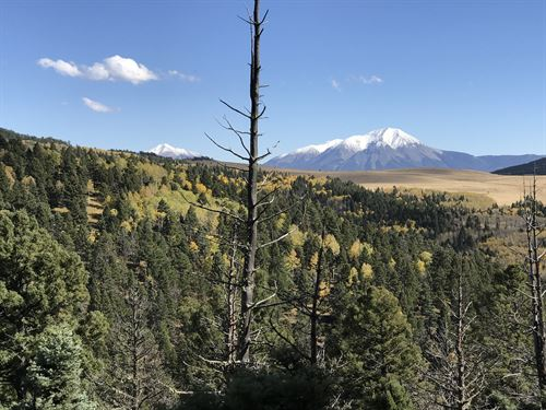 Forbes Wagon Creek Ranch - Lot 452 : Fort Garland : Costilla County : Colorado