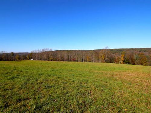 243 +/- Acres Land For Sale : Shickshinny : Luzerne County : Pennsylvania
