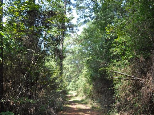 177 Acres Bridge Rd : Corrigan : Polk County : Texas