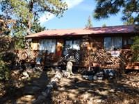 3351536 - Delightful Getaway Cabin : Cotopaxi : Fremont County : Colorado