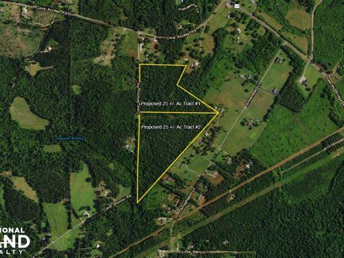 Cove Shocco Talladega Timber Tract : Talladega : Alabama