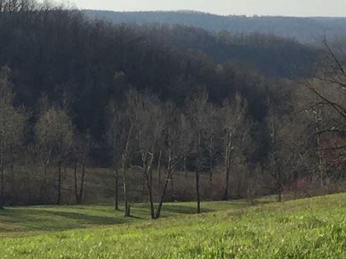 140 Acres of Recreational Hunt : Marshall : Searcy County : Arkansas