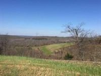 Price at $1100 Per Acre, 220 : Marshall : Searcy County : Arkansas