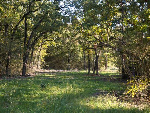 12.51 Ac Tract 11 Cedar Ridge Rd : Huntsville : Walker County : Texas