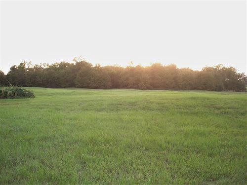 Small Acreage Half Wooded : Detroit : Lamar County : Texas