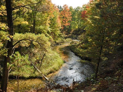 Slagle Creek Cabin : Manistee : Michigan